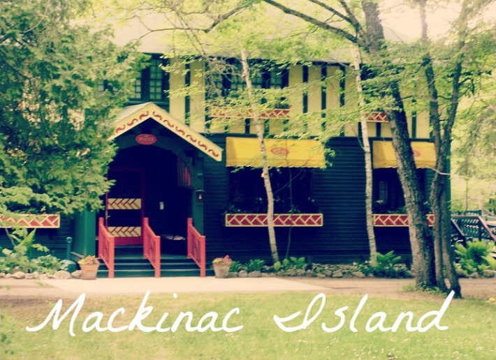 travellingasassin.mackwoods